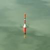 【フカセ釣り】棒ウキのメリット・デメリットについての徹底考察