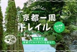 【京都一周トレイル®公式】神秘的な京都ワイルドサイドを訪ねて(北山西部コース編)