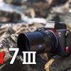 あなた好みのカメラとは【SONY α7III】#3