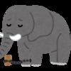 沖縄の長男とゾウと鎖
