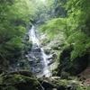 自然を巡る(福養滝)