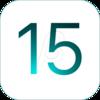 iPadOS 15 RC (19A334)