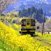 週末は、ムーミンに出会える昭和のディーゼルカー『キハ52』気動車が走る…いすみ鉄道へ