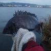 清水 貝島 紀州釣り 雨なのに釣りする変態