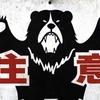 【オズモポケット】ヒルナンデスで関口メンディーが紹介!プチバズった!