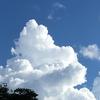 日本でも昔からこんな雲あったのかしら、、、