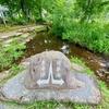 ひるがの分水嶺公園の池(岐阜県郡上)