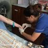 【ネパール】|まさかの事故!!カトマンズで早朝にホテルから病院へ運ばれた件。