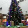 クリスマスツリーとまちづくり