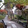 秋の盛岡城跡公園(岩手公園)。紅葉は今が見頃。