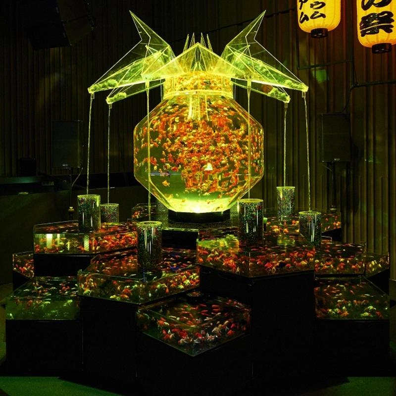 夜の二条城で金魚が舞う!幻想的なアートアクアリウム城
