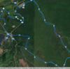 富士山原始林トレイルラン2016を走った
