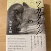 『ワカタケル』池澤夏樹/神話ファンタジー