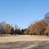 兼業主夫の育児日記012:落ち葉の野川公園