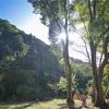 再び集うということ - Damonde Trail run for joy -