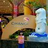 子供連れでも楽しめる場所がいっぱい!チャンギ国際空港
