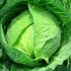 農薬漬けの野菜はうまいうまい!