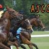 1月21日 日曜日「AJCC」を勝手に予想