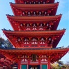 都内で紅葉の季節に行きたい「高幡不動尊」のもみじは本当に綺麗