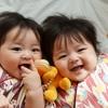 双子離乳食が大変すぎる…。あの時の〇〇が役立った!現役双子ママが離乳食を解説