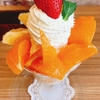 「気まぐれ柑橘パフェ」フルーフ・デゥ・セゾン 実食レポート