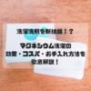 【洗濯洗剤を断捨離】ランドリーマグちゃんのお手入れ方法〜クエン酸漬け〜