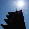 京都:一日だけの奈良詣で(^^♪