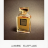 Ambre Sauvage (2015)