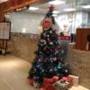 「鼎泰豐(ディンタイフォン)」の「A4店」再訪レポート