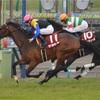 京都記念 2017 馬体状態チェック