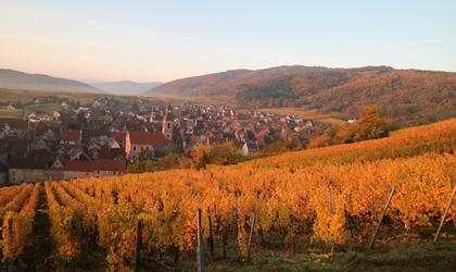 【フランスの絶景】最高に感動する田舎の美しい村たち