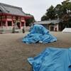 幸先詣(さいさきもうで:初詣を前倒しし年末に参拝すること)は近所のありふれた神社で済ませた