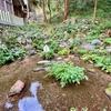 菊水泉(岐阜県養老)