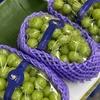 今日の果物 (2020/JUL/29) Today's Fruits