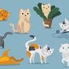 2月22日(月) 猫の日