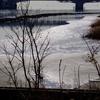 2018年1月31日(水)荒川河口ルーティン106.1km Part 2/3