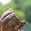 野球用グラブ(グローブ)保革オイル・おすすめランキング ベスト5