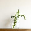 オーガニックの化粧品に植物由来のものが多いわけとは。