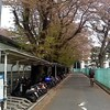 葉桜日記・4月14日(日)晴れ