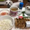 本日の夕飯!スーパーのお惣菜「カリッと揚げ餃子」