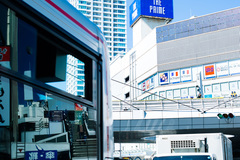 オルタナティブ古民家と、ちょっと南の楽園【横須賀】