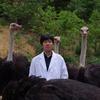 京都府立大学ベンチャーから生まれた大評判のダチョウ抗体。ウイルス除菌スプレーが発売中!