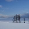 クリームの雪原