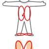 骨盤角度で変化する大腿筋膜張筋の役割の違いこそが、西洋・東洋の歩行パターンの違い