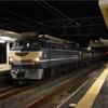 東海道線で貨物列車の撮影