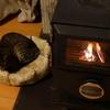 冷え込んだ秋の夜を「簡単に」暖める薪ストーブ