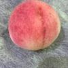 日本産白桃が美味しすぎました