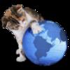 IRcatのCocoa版