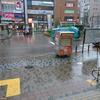 フウナ in リアル 2019・10月 目黒 「ハギビス(台風19号)」防衛戦