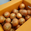 【幻のタマネギ】札幌黄のオーナー制度になり10kgのタマネギが届きました。
